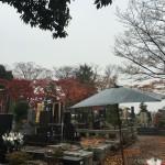 都立の八柱霊園で納骨法要
