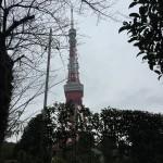 東京タワーの下で納骨法要しました