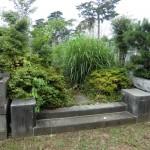 八柱霊園へ納骨前の下見に行ってきました/草むしりをしました