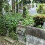 青山霊園で改葬、返還手続きの後、出骨しました