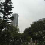 雑司ヶ谷霊園で納骨法要を行いました